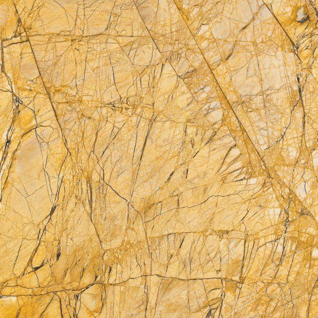 米洛西金黄 800×800